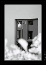 My Gallery (8/35)