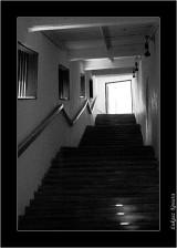 My Gallery (96/117)