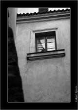 My Gallery (66/141)