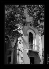 My Gallery (27/88)