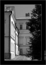 My Gallery (39/88)