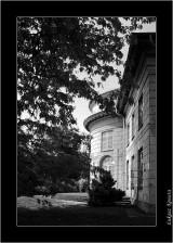 My Gallery (58/88)