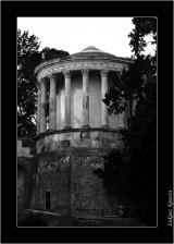 My Gallery (88/88)