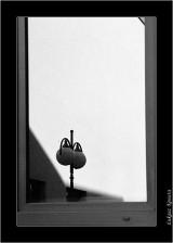 My Gallery (20/35)