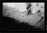 My Gallery (68/108)