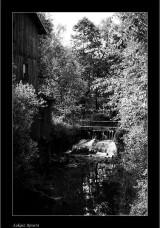 My Gallery (70/108)