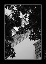My Gallery (49/117)