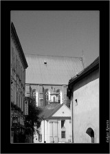 My Gallery (61/96)