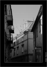 My Gallery (72/141)