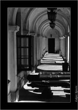 My Gallery (14/59)