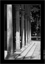 My Gallery (53/88)