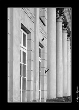 My Gallery (63/88)